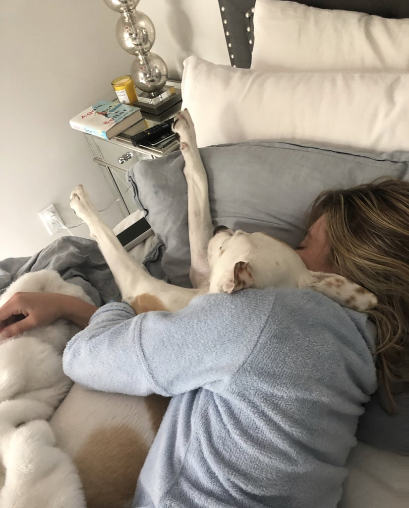 Sydney and Tank Snuggle Up For a Nap