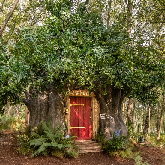 Book a Disney Winnie the Pooh Tree-House Airbnb in England