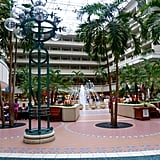 Orlando International Airport, Florida (MCO)