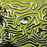 Glendurgan Garden, England