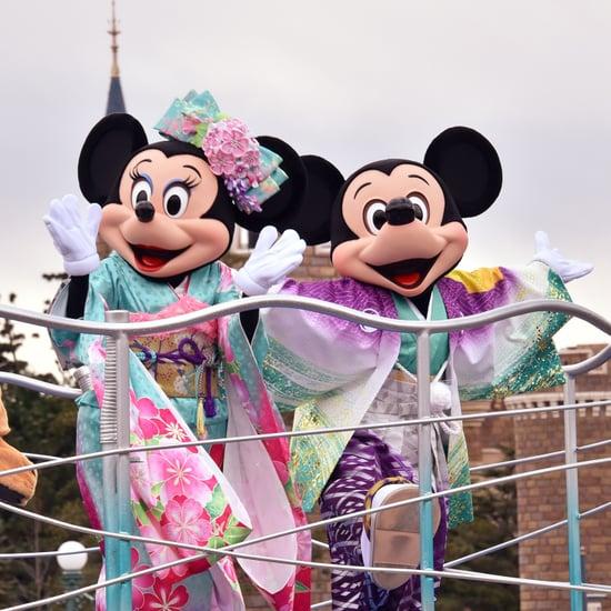 Tokyo Disneyland Guide