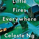 What Is Little Fires Everywhere About?