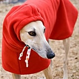 Dog Winter Coat With Drawstring Snood, $64-$84