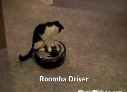Roomba: Cat Sold Separately