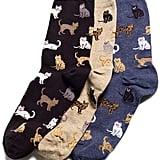 Hot Sox Cat Socks