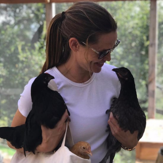 Jennifer Garner With Her Pet Chicken Pictures