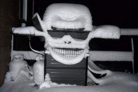 It's a Bird! It's a Skull! It's . . . a Gas Grill Covered in Snow?