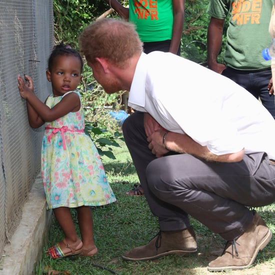 Prince Harry at Nature Fun Ranch in Barbados December 2016