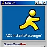 AIM Chatting With Our Friends