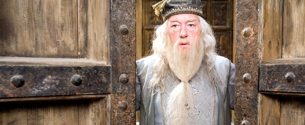 The Wizard J.K. Rowling Said Dumbledore Was in Love With Will Shock You