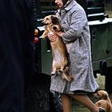 الملكة تحمل أحد جرائها، عام 1977