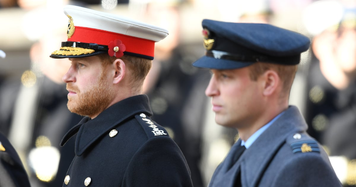 Harry and William's Procession Order at Philip's Funeral Isn't Meant to Send a Signal.jpg