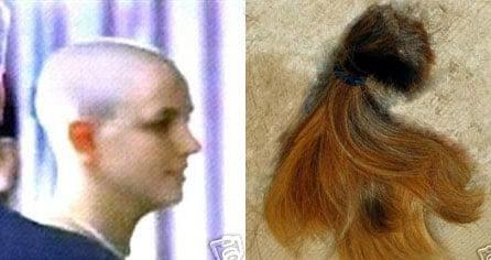 Buy Britney's Hair