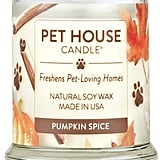 One Fur All Pumpkin Spice Natural Soy Wax Candle