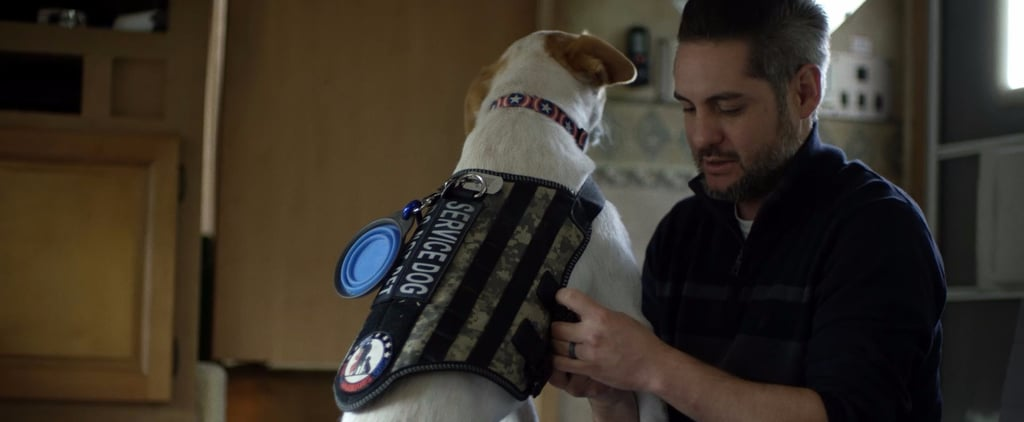 Service Dogs Save Veterans' Lives, So Why Aren't They Covered by the VA?