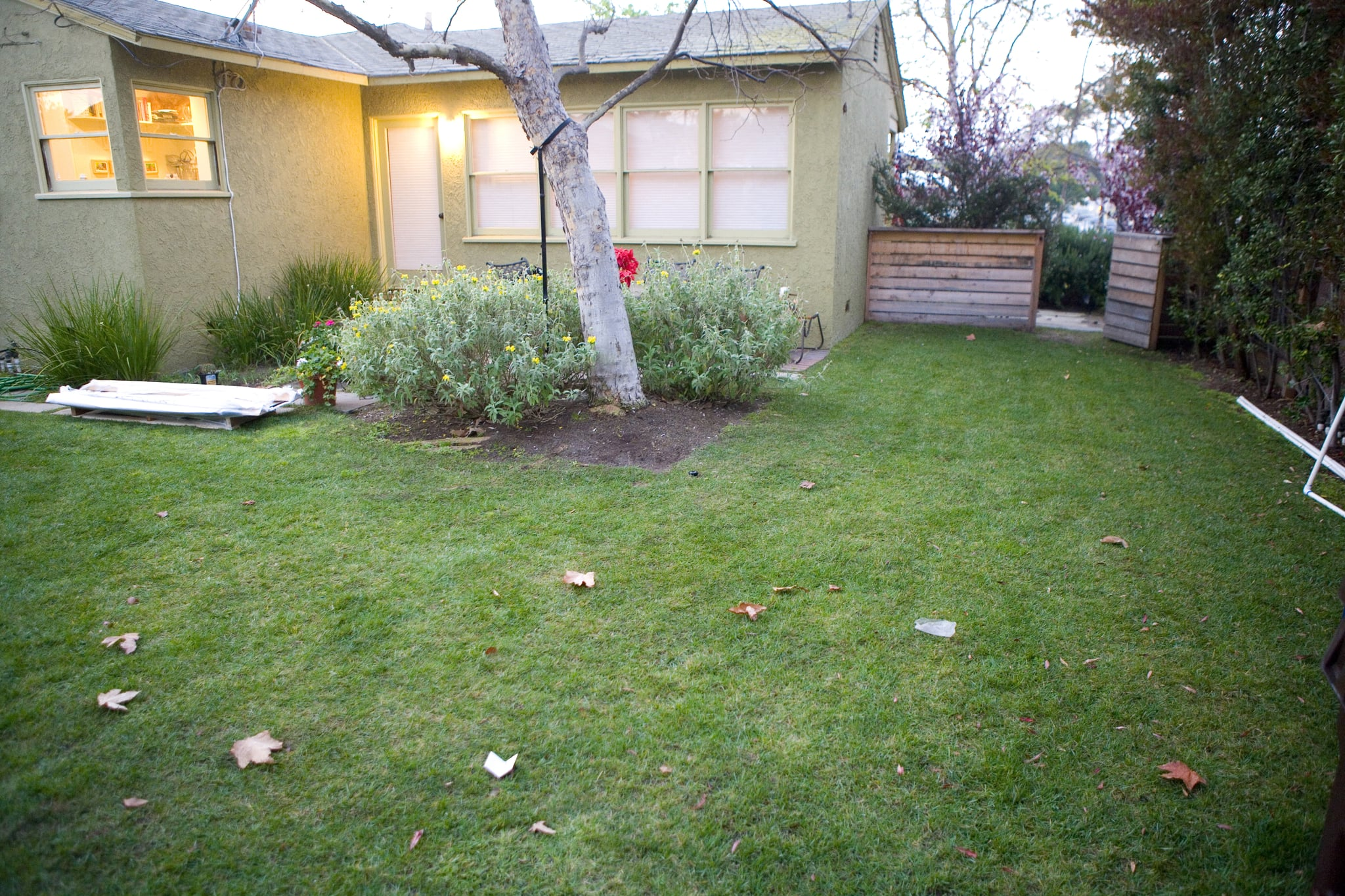 A lifeless backyard needs a push in the right direction.