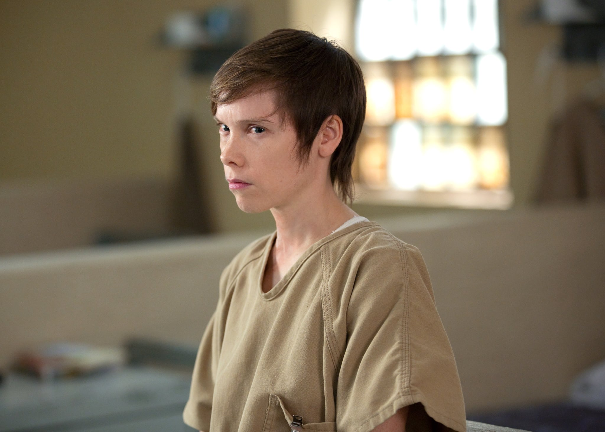 Why Is Gina Murphy In Prison Why Every Orange Is The New Black Inmate Is In Prison Popsugar Entertainment Photo 20