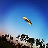 Toss a Frisbee
