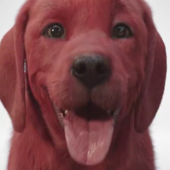 Clifford the Big Red Dog Live-Action Movie Teaser