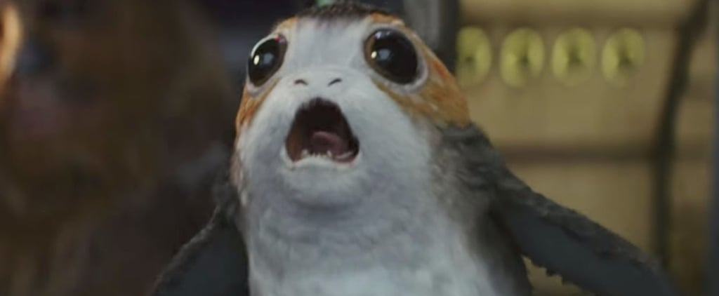 The Internet Is Obsessed With the Adorable New Creature in The Last Jedi Trailer