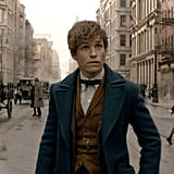 The Trajectory of New Scamander