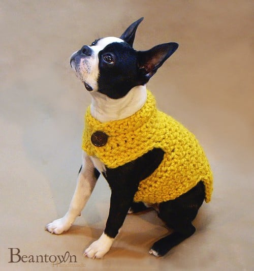 Ultra Warm and Thick Dog Sweater ($50)