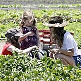 Rachel Bilson picked vegetables with her sisters.