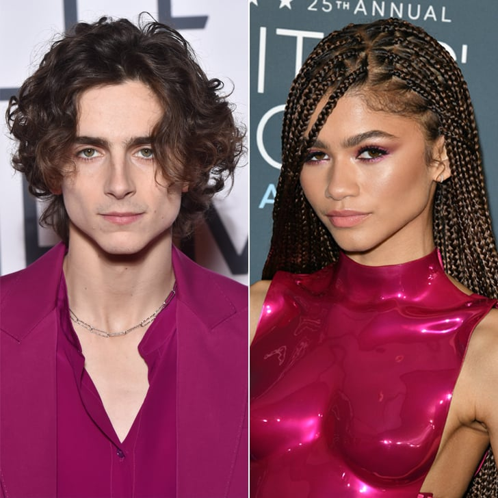 Imagine Running Into Timothée Chalamet and Zendaya at Bed Bath & Beyond — Just Imagine!