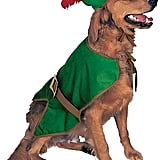 Robin Hood Pet Costume