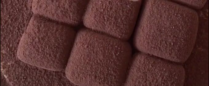 2-Ingredient Chocolate Truffles Recipe