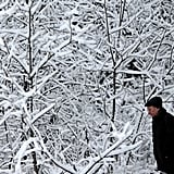 A man walked among snow-covered trees outside Moscow, Russia.