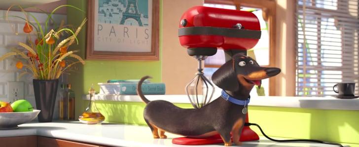 The Secret Life of Pets Official Trailer