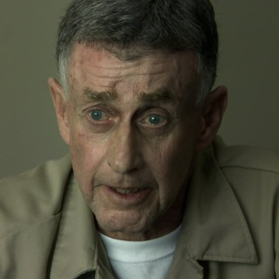 Michael Peterson Owl Theory in The Staircase