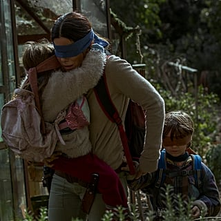 Is the Bird Box Book Getting a Sequel?