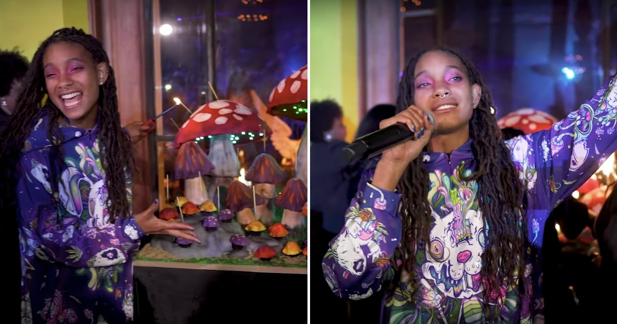 See Willow Smiths 19th Birthday Party Video Popsugar