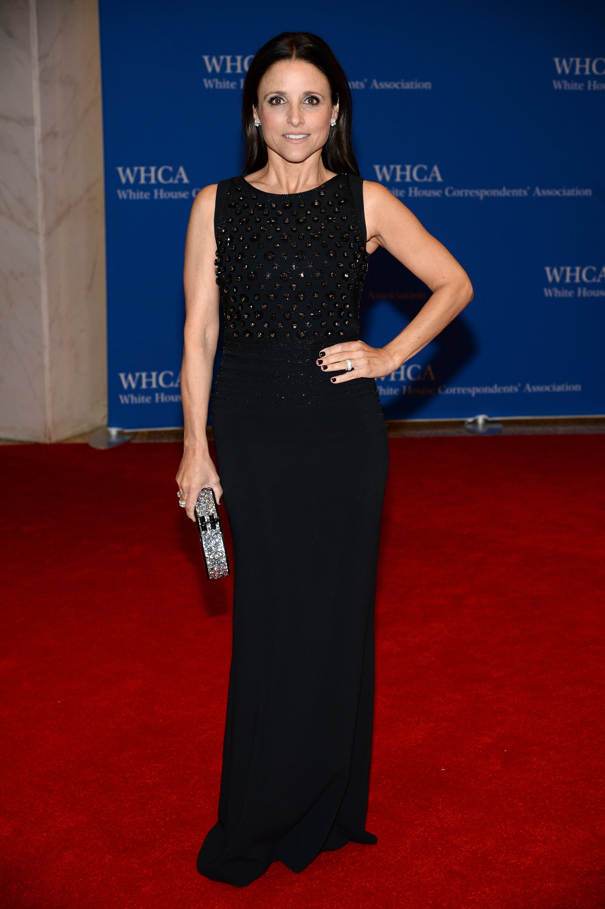 Julia Louis-Dreyfus had her turn on the red carpet.