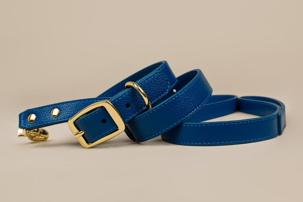 Boco Designer Leather Dog Lead and Collar, $96