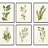 Watercolor Herbs Print Set No. 2 Botanical Print Giclee Art