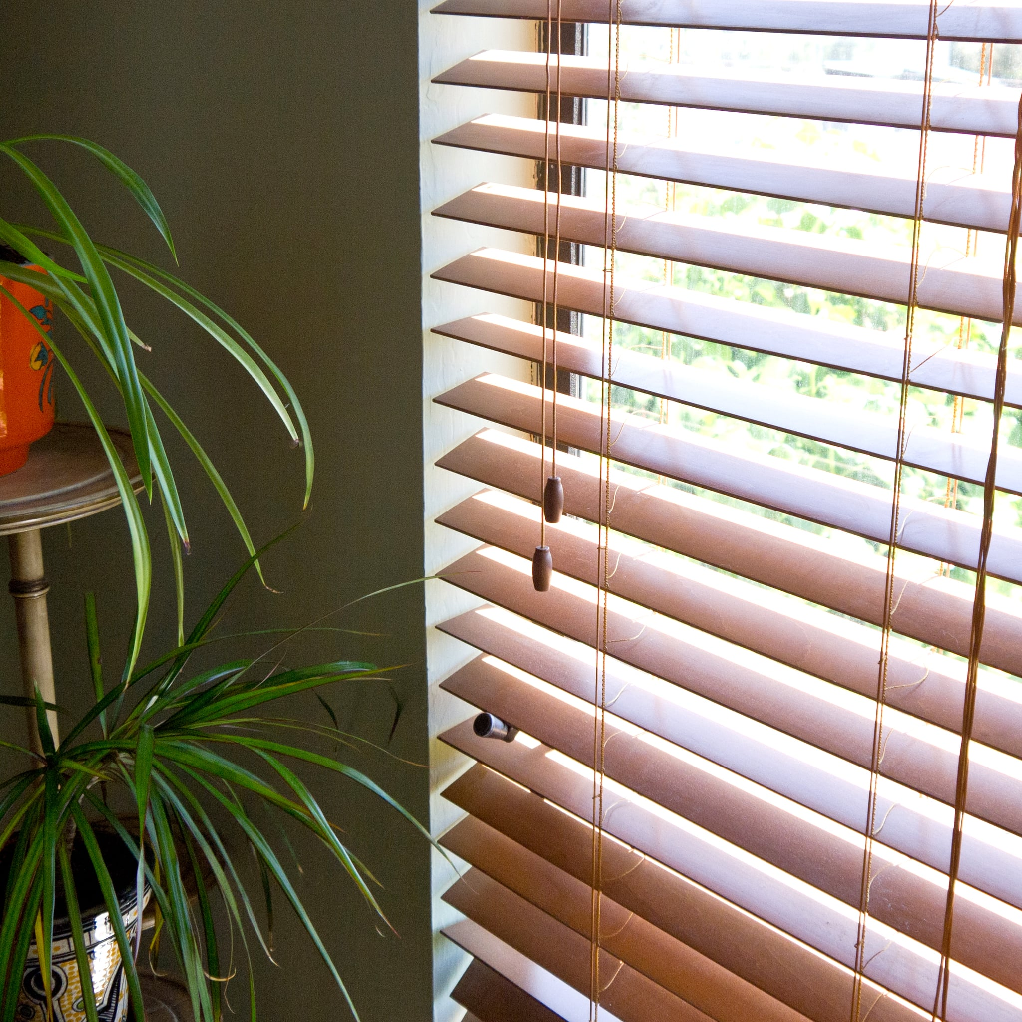 haven full natural yet storage the blinds blog heard view infographic hacks you cleaning t cleaner of