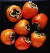 What's In Season: Persimmons