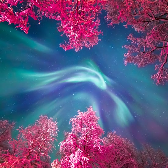 Insight Astronomy Photographer of the Year Shortlist 2017