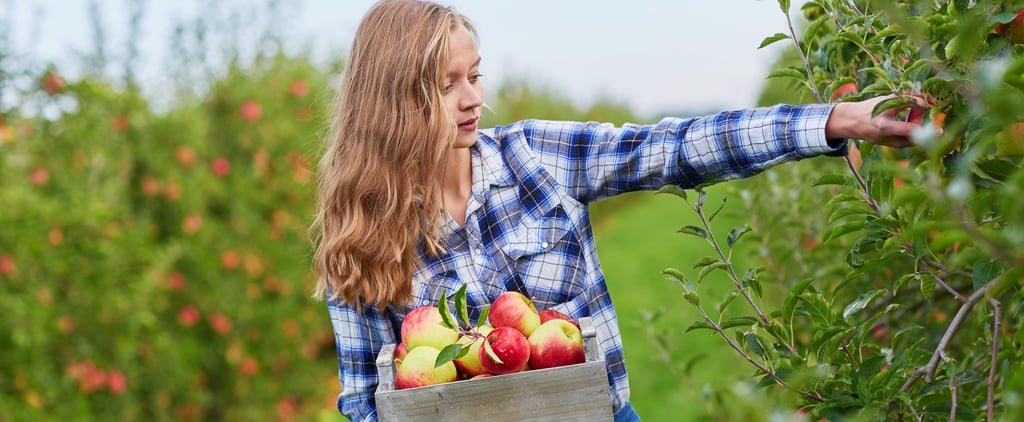 The Best Apple-Picking Instagram Captions For 2021