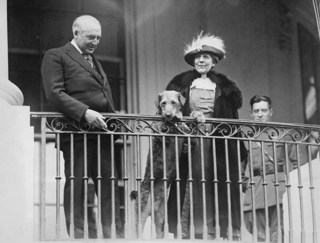 Warren G. Harding and His Dog, Laddie Boy