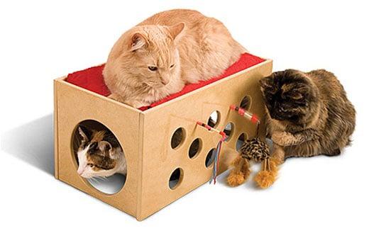 Kitty Bunkbed and Playroom