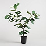 After comparing prices, reviews, and pictures, I finally pulled the trigger on the Faux Fiddle-Leaf Fig Plant ($130) from Cost Plus World Market. With 95 reviews averaging almost five stars, I figured it was a risk worth taking. It also has a taller Faux Fiddle Leaf Fig Tree ($180) with more of a top-heavy shape.