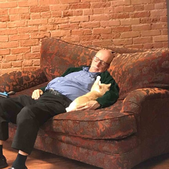 Man Naps With Cats at the Animal Shelter