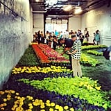Converse treated us — and NYC! — to an indoor garage decorated from wall to wall in gorgeous floral color.