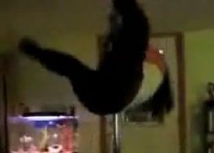 Homemade Stripper Pole