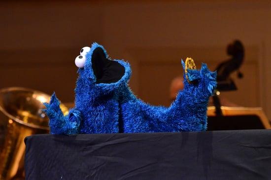 Cookie Monster Reddit AMA February 2019