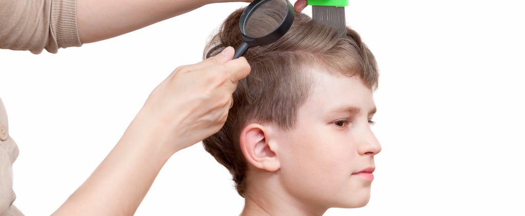 New Policy Says Children With Lice Should Be Sent to School Regardless of Nits